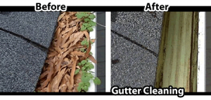 Oakville_Gutter_Cleaning