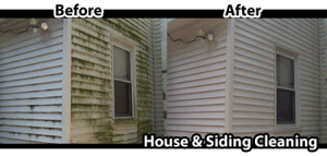 Oakville_Siding_Cleaning
